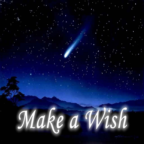 Make a Wish - by best Astrologer and Vastu consultant in Pune, India - Anand Soni