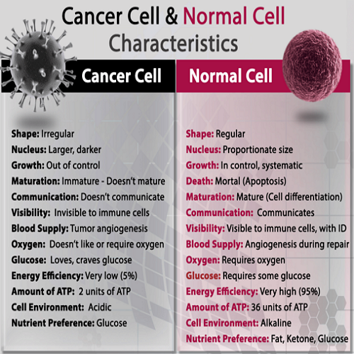 """ Cancer - by best Astrologer and Vastu consultant in Pune, India"""