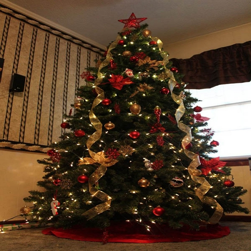 """"""" christmas tree by best Astrologer and Vastu consultant in Pune, India"""""""